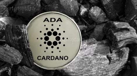 ADA Coin Madenciliği Nasıl Yapılır?
